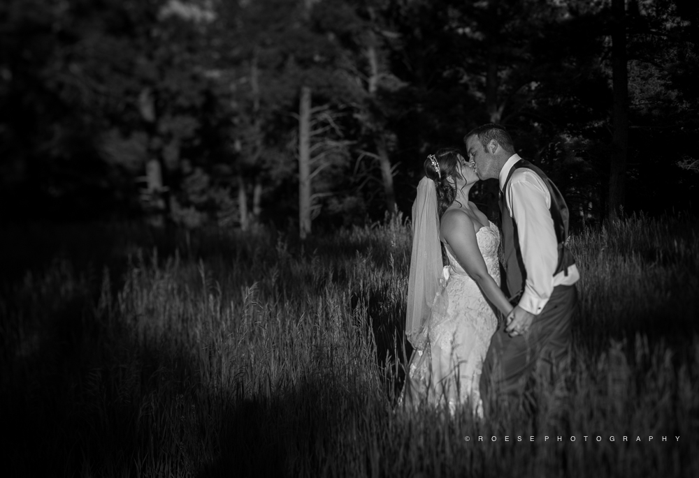 Roese-Photography.-Wedding.-Andrea-and-Casey-661.jpg