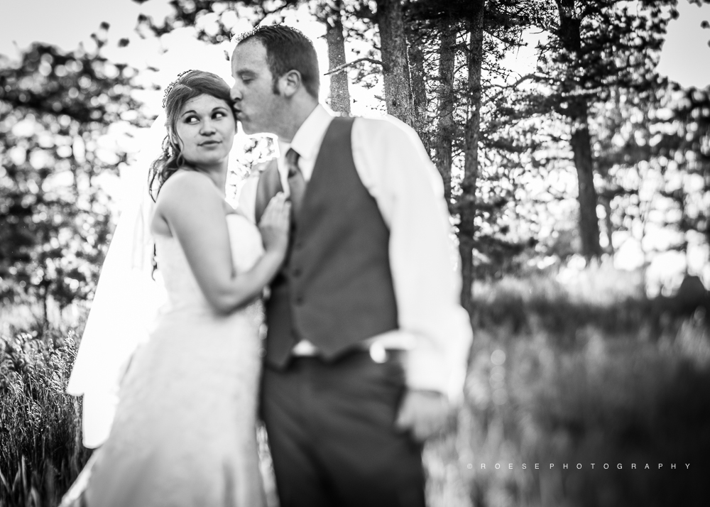 Roese-Photography.-Wedding.-Andrea-and-Casey-671.jpg