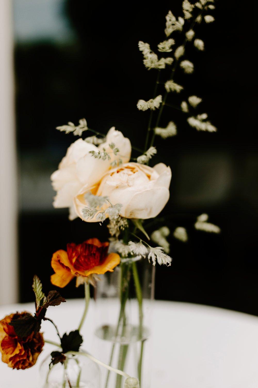 Liz and Jacob surprise wedding Bloomington Indiana Emily Elyse Wehner Photography LLC-223.jpg