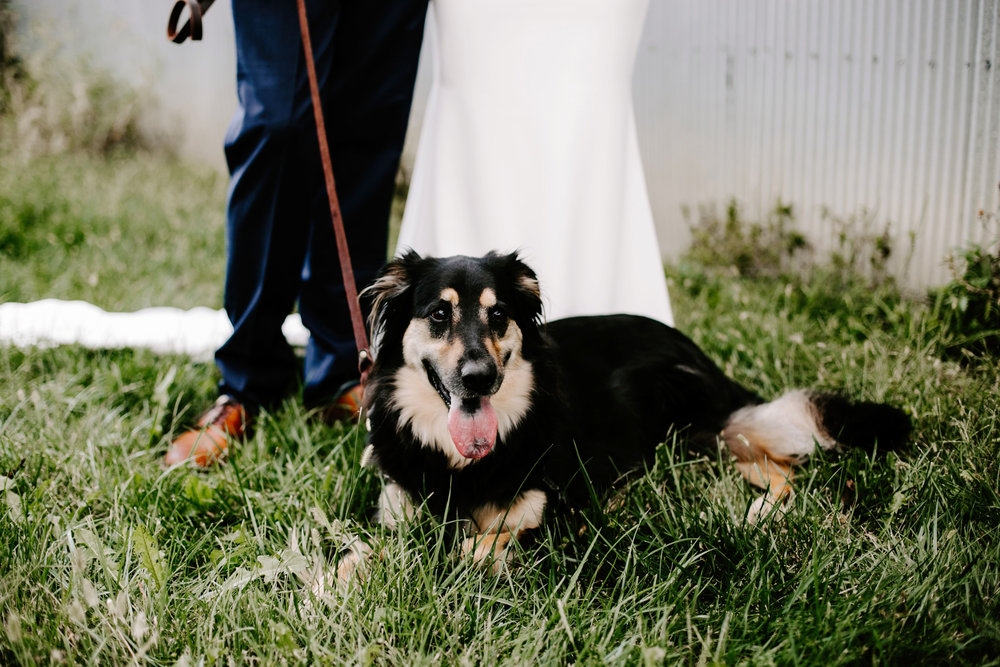 Gwen and Andy Traders Point Hunting Club Wedding in Zionsville Indiana by Emily Elyse Wehner Photography LLC-317.jpg