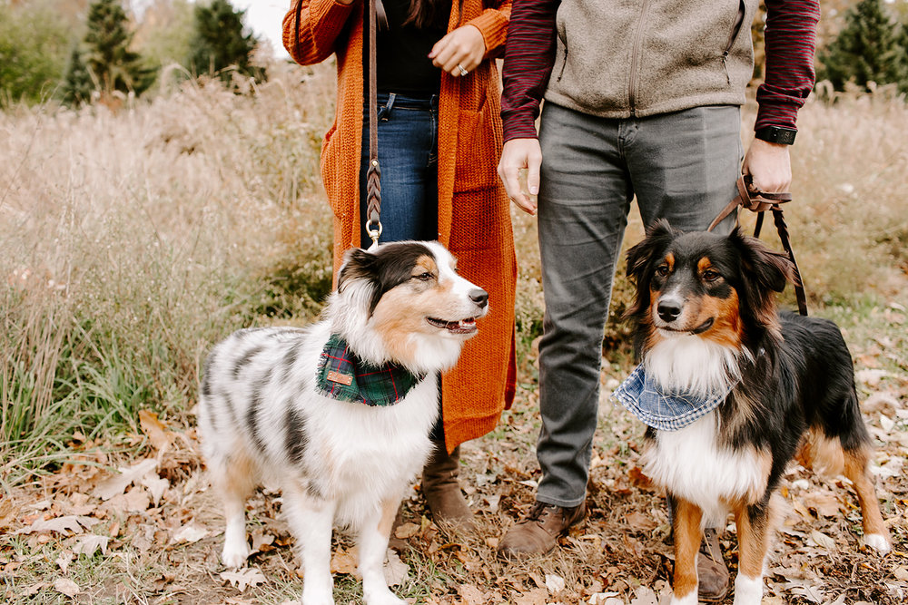 Slonaker Family Fall Mini Session Holliday Park by Emily Elyse Wehner Photography LLC-38.jpg