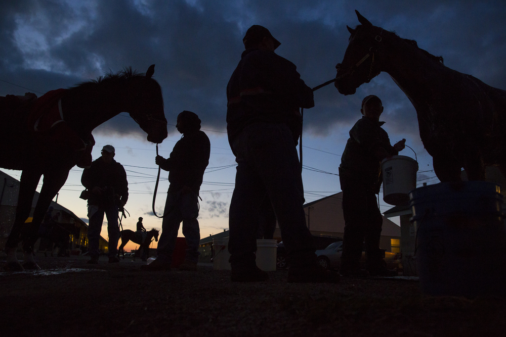 Horses are washed in the barn area during morning training in preparation for the 2014 Kentucky Derby at Churchill Downs in Louisville, Ky. on Thursday May 01, 2014.