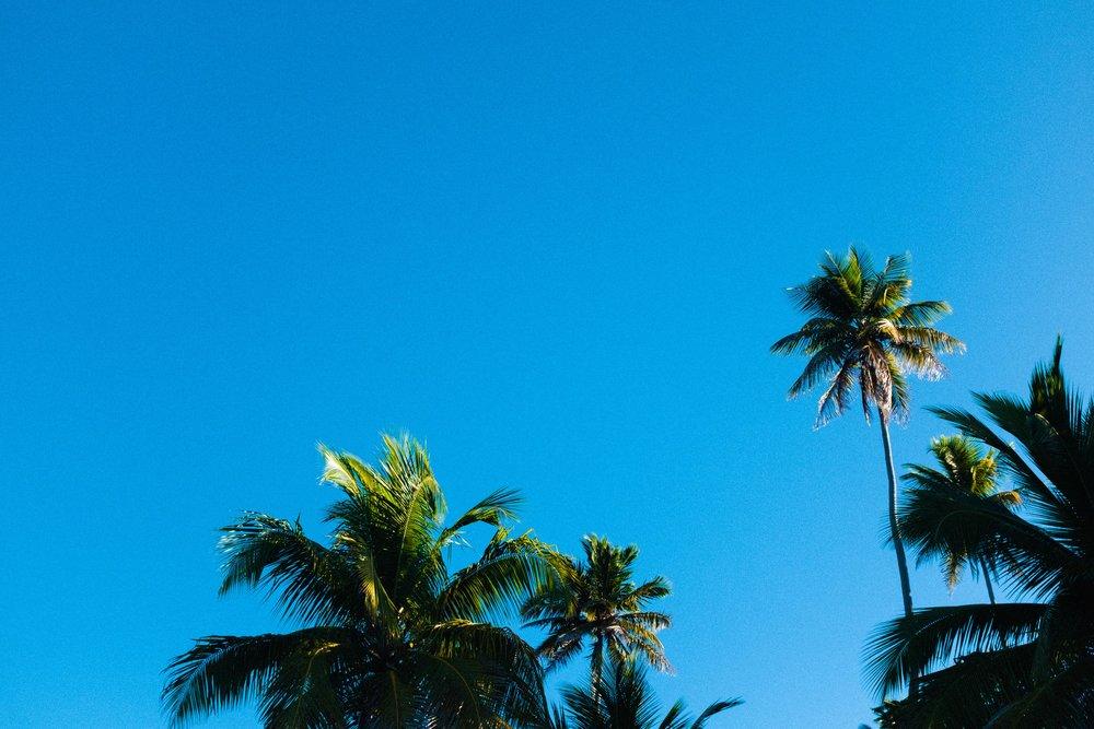 puerto-rico-rincon-7311.jpg