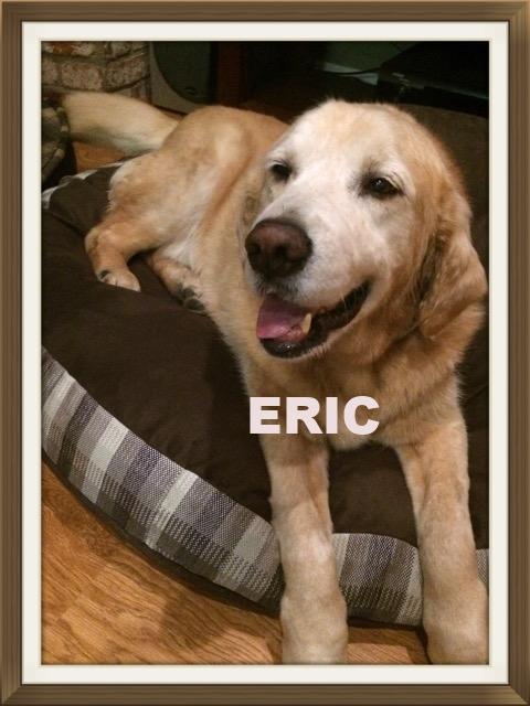 Eric-New.jpeg