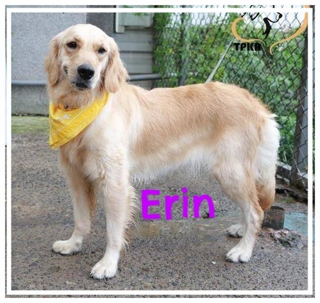 Erin-1.jpg