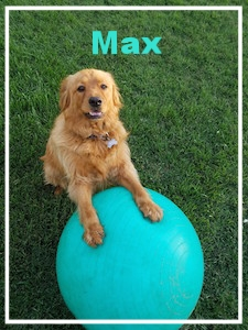 max_on_ball.jpg