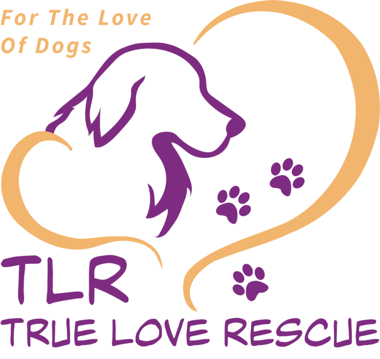 True Love Rescue