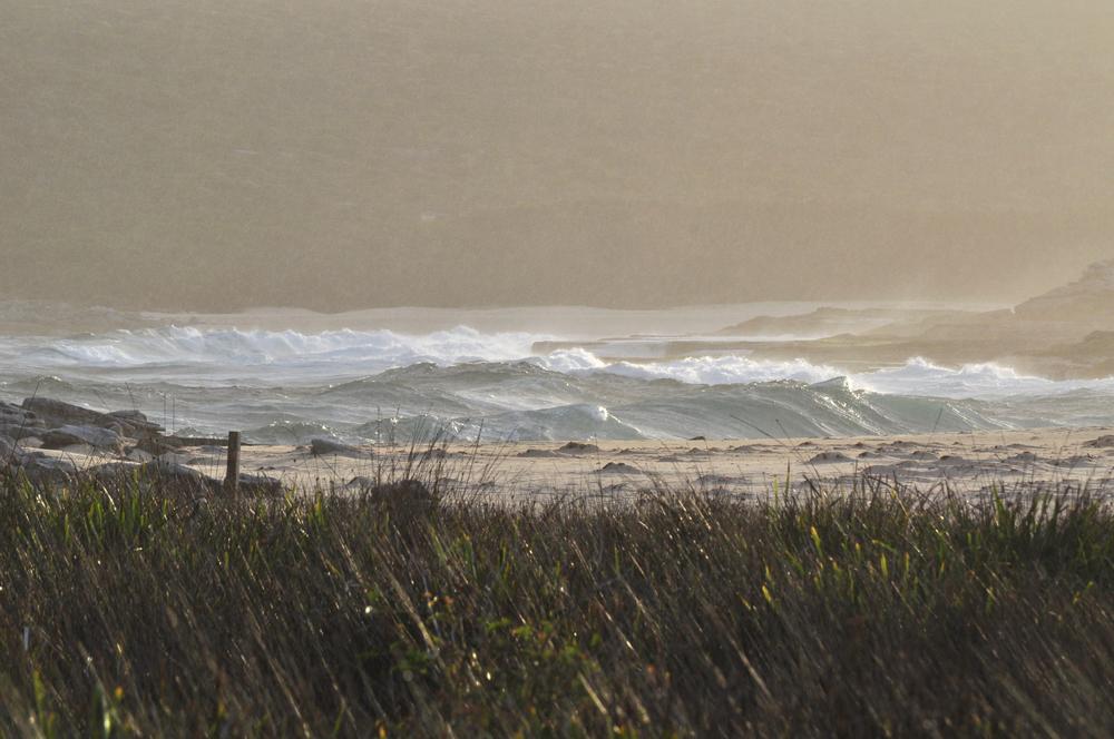 wavesmarley.jpg