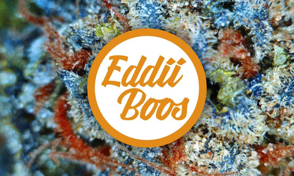 Eddii Boos