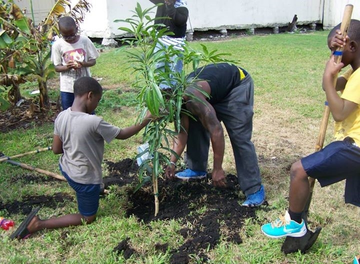 Our Mission - Team Gardens mission is to teach health education and promote a healthy lifestyle by gardening