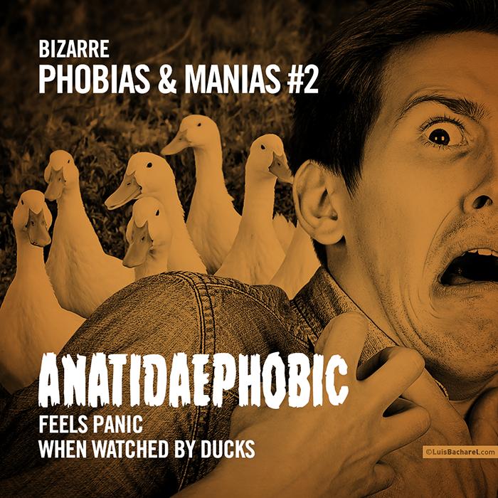 BizarrePhobias&Manias0102ANATIDAEPHOBIC.png
