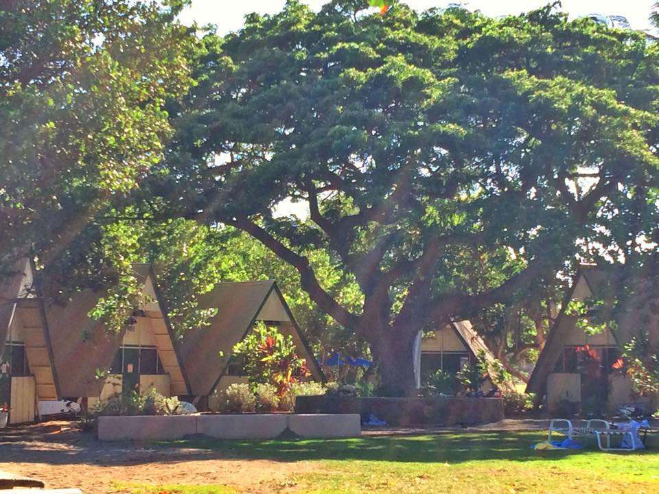 Camp Olowalu Cabins