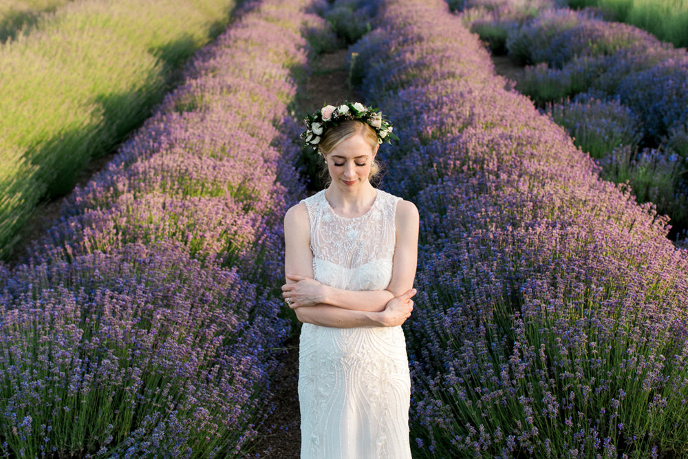 Lavender Fields for Days