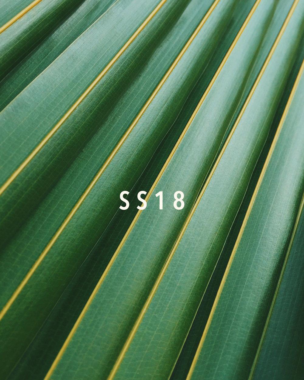bright-color-colour-136740 4.jpg