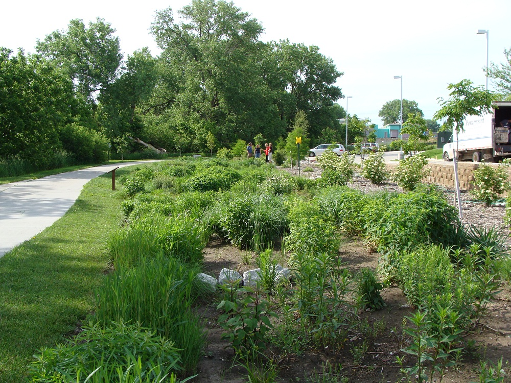 Green landscaping within impervious surfaces, such as parking lots, can help reduce runoff.