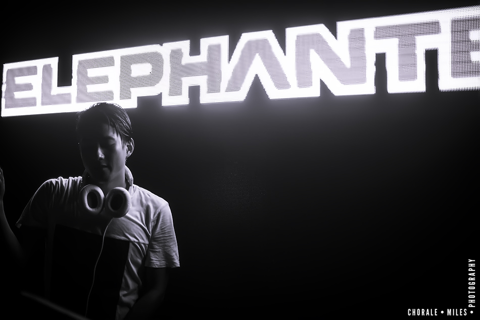 elephante100.jpg