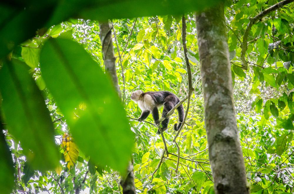 Costa Rica-56.jpg