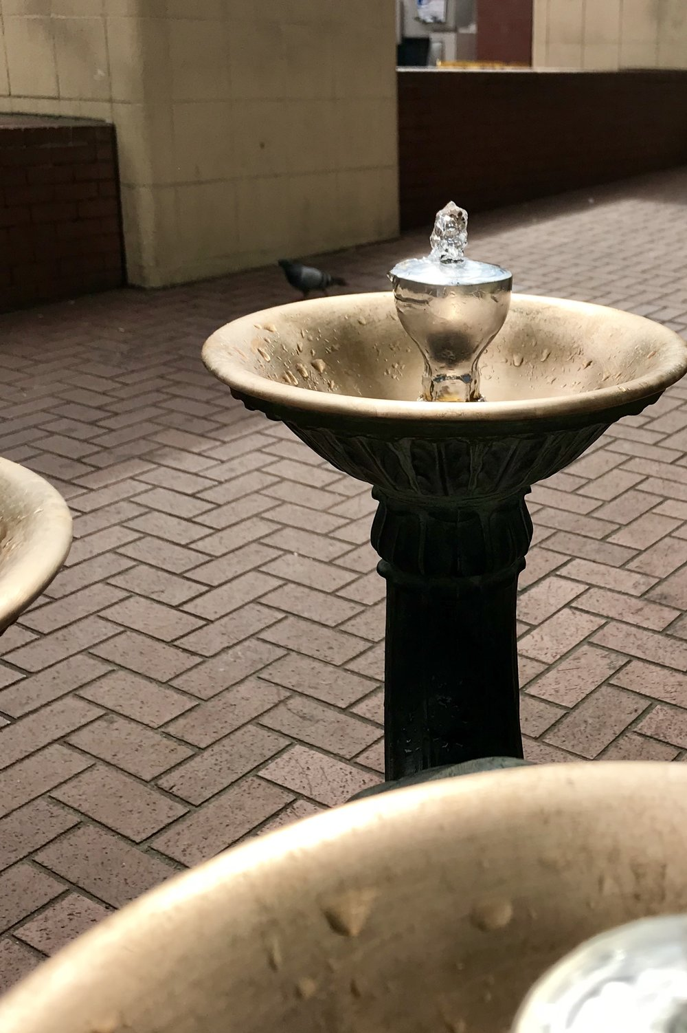 Portland Water Fountains