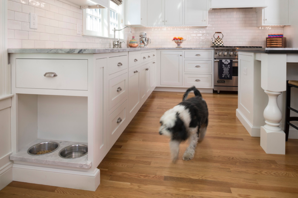 Built in dog bowl at the end of your cabinets is perfect for clearing up floor space and conceiling Fido's food.