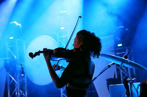 Spectacle.Music.Bluebird.10.jpg