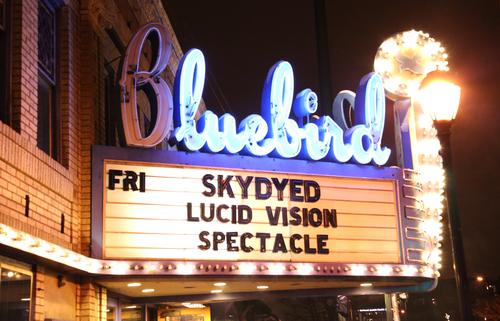 Spectacle.Music.Bluebird.7.jpg