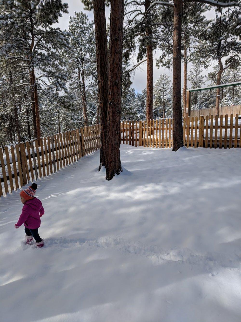 Freedom of Movement The Montessori School of Evergreen 2018