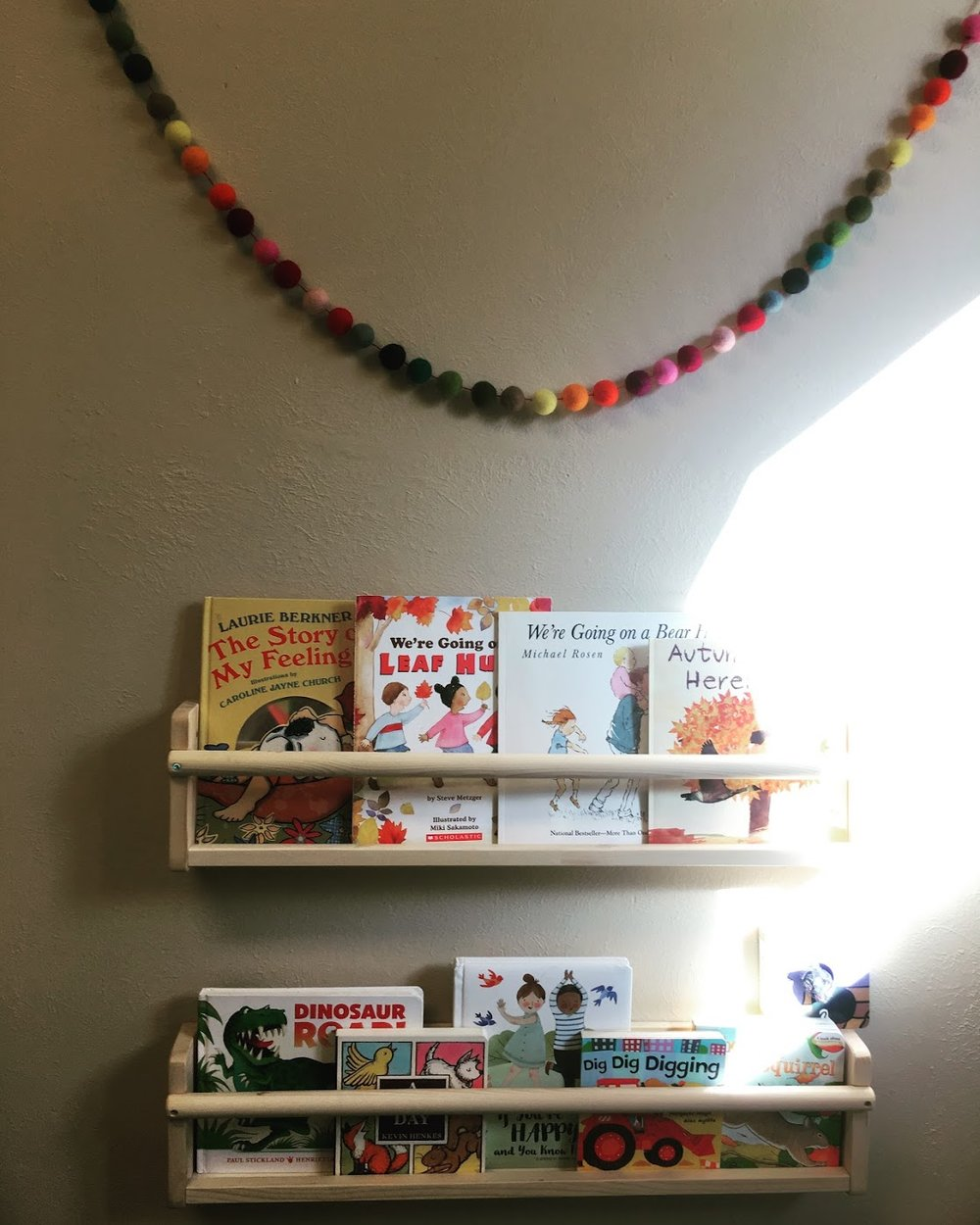 Book Shelf Vibes. The Montessori School of Evergreen 2019