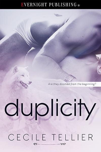 Duplicity-evernightpublishing-2016-smallreview.jpg