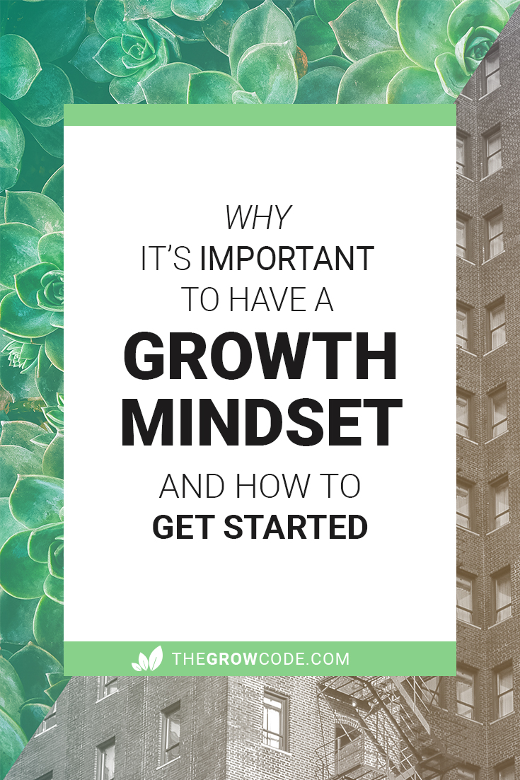 Why it's important to have a Growth Mindset and how to get started