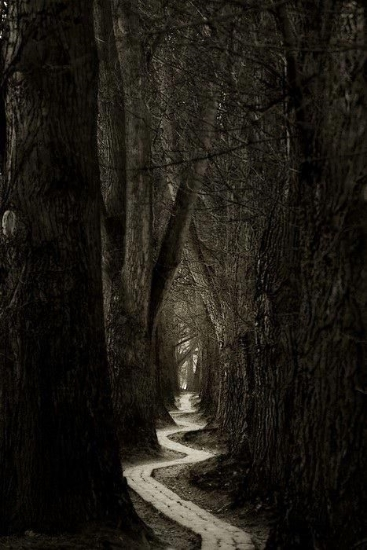 The path started out so seemingly plain.  Straightforward.  Direct.  All her plans were well laid.  The future seemed set...  But the path had other plans...  It became more complex than she ever could have imagined...  What once was a clear journey, now wound to an uncertain end...
