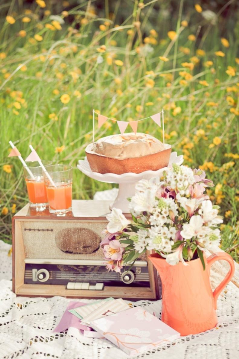 coral vintage picnic