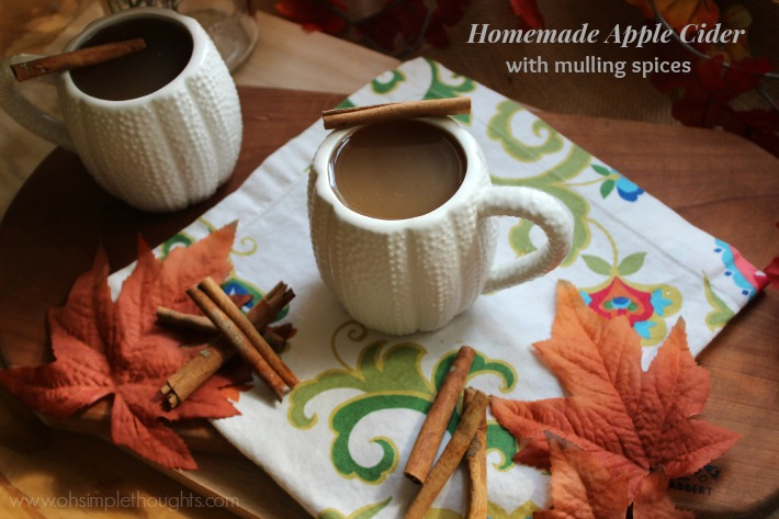 Homemade Apple cider with mulling spices! Hello Fall, welcome back!!!!