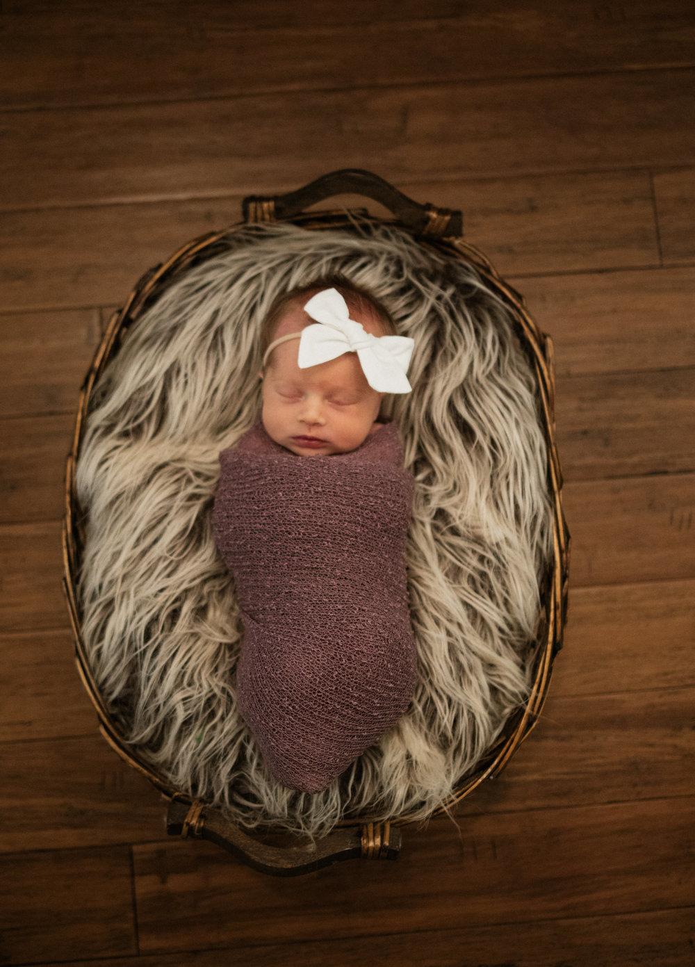 Cox Newborn 2018-0039.jpg