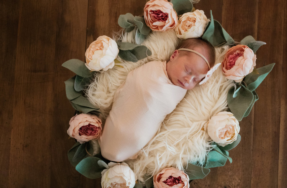 Cox Newborn 2018-0068.jpg