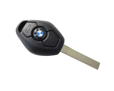 BMW Remote Keys have rechargable batteries.