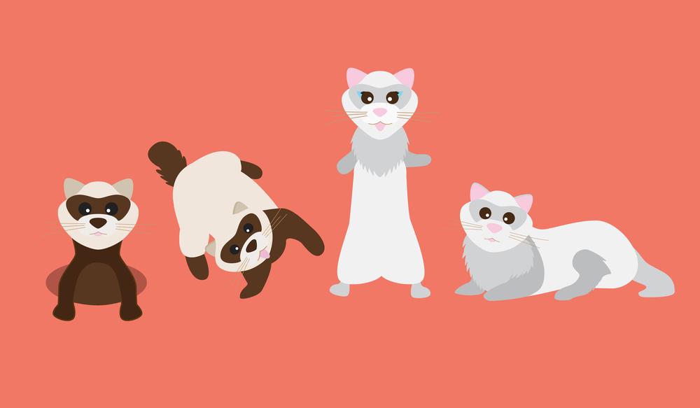 dig_dook_mascot.jpg