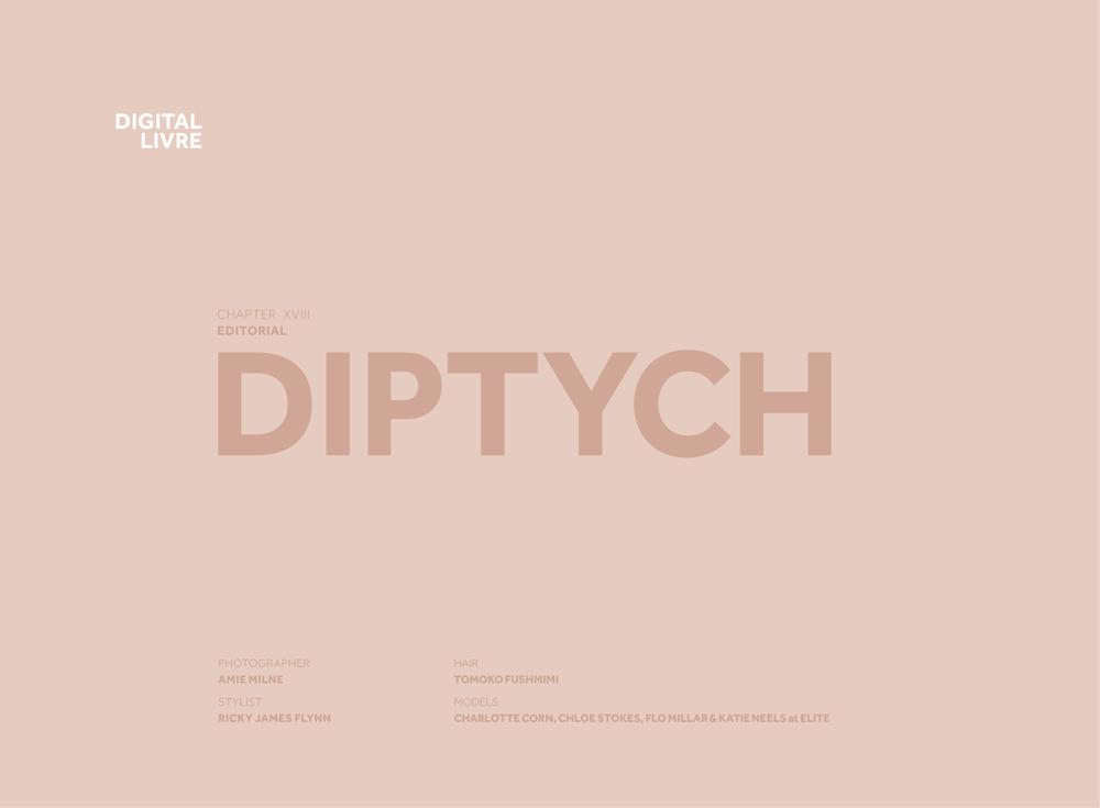 DigitalLivre_18_Diptych_03.png