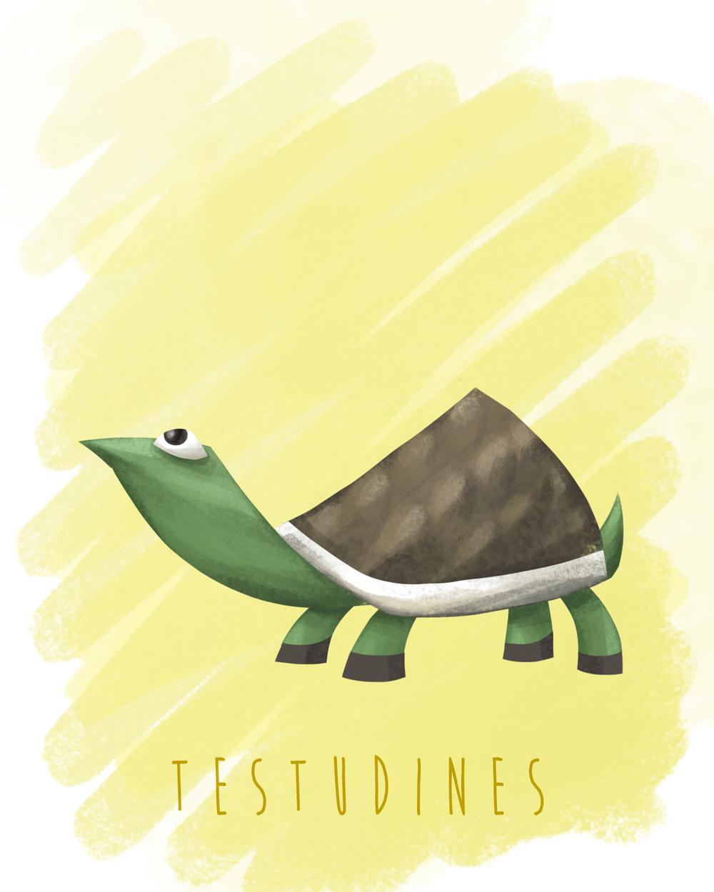 Families_Testudines_yellow.jpg