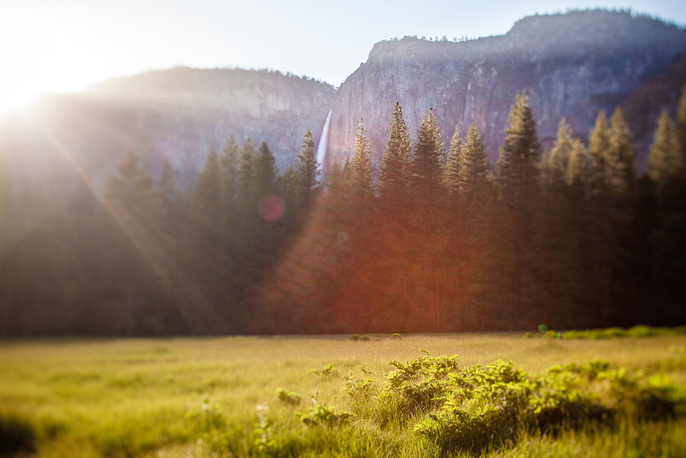 NEW_SITE_2015_YOSEMITE-8104.JPG