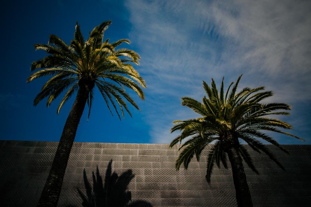SAN_FRANCISCO_2014_9307.JPG