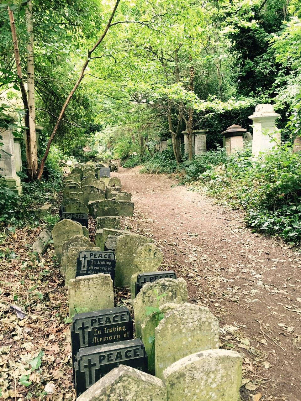 Cemetery Abney Park