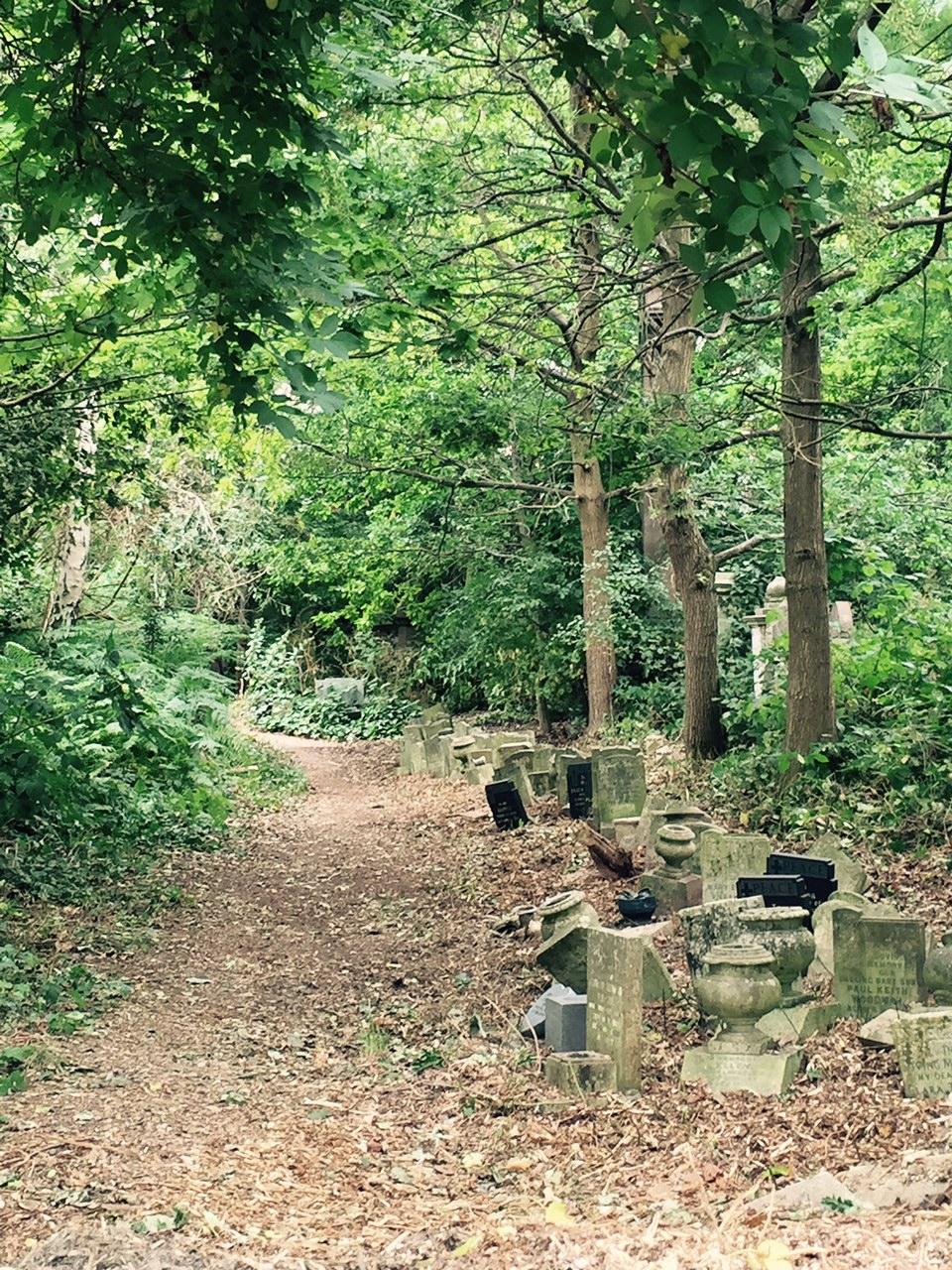 Cemetery path.jpg