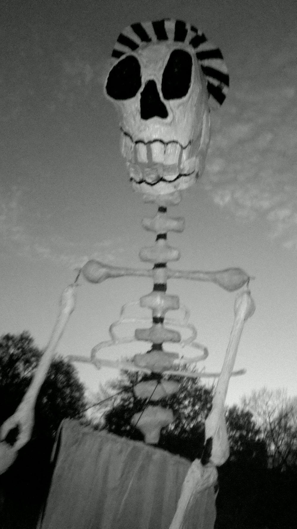Giant Skeleton Puppet!