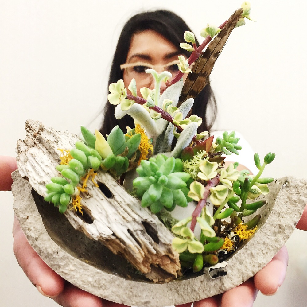 inspiration by succulents.jpg