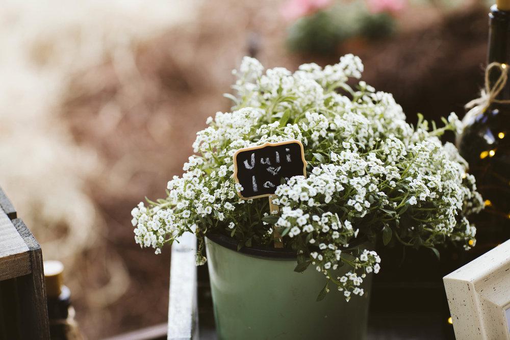 Wedding | Ian and Juli | Vanessa Boy | vanessaboy.com-100.jpg