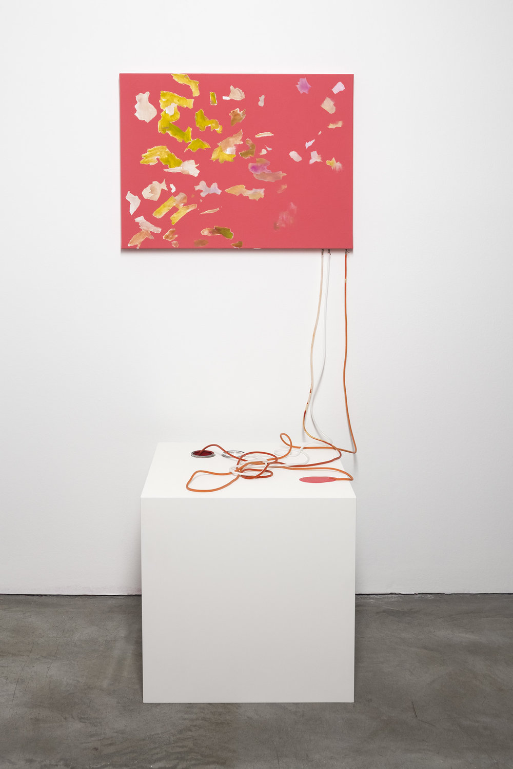 fifty / fifty (how to make a painting), 2013    Acrylic and oil, shell, flower, lace doily, tube, can,    pedestal    dimensions variable