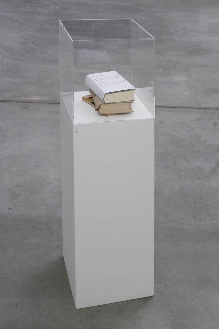 Hommage / Dummy , 2013  MoE, book cover in K4  Dimensions variable