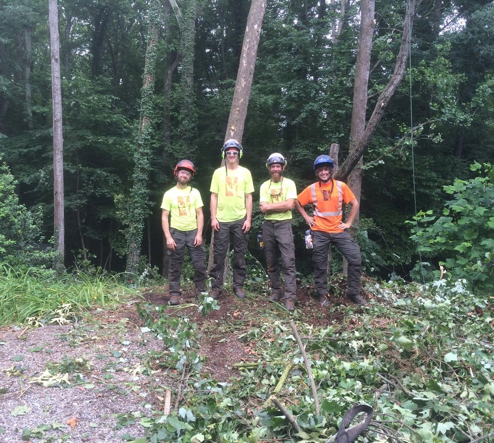 The crew from Smart Feller Tree Works. We highly recommend these guys!