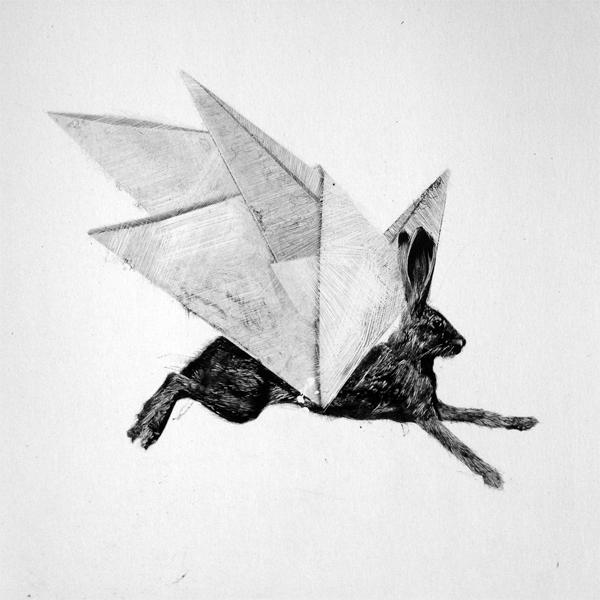 Origami Haas