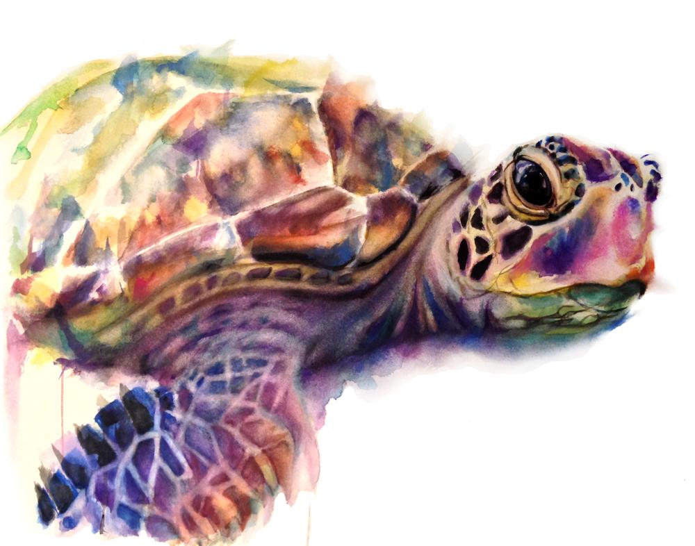 Sea Turtle Print.jpg